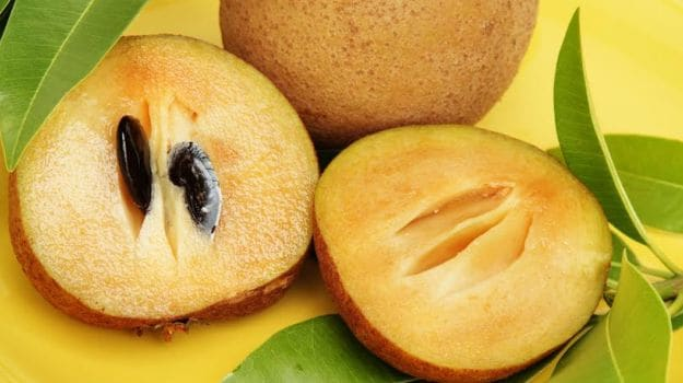 Incredible Sapota, Sapota Fruit uses, Sapota Fruit Benfits, Sapota Benfits in Telugu, Health Tips in Telugu, Benefits Of Sapota juice, Health Benefits of Sapodilla, Health Benefits of Sapota, Sapodilla Uses, Mana Telugu Nela,