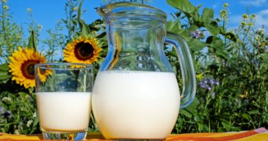Health Benefits of Milk, Health Benefits of Boiling Milk, Benefits of Warm Milk, Milk Nutrition Facts, Manatelugunela, What are the benefits of Milk, Health Benefits of Drinking Warm Milk, Health Benefits of Warm Milk, Health Tips in Telugu, Telugu Health Tips,